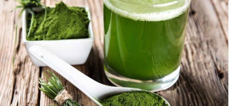 Green Barley Plus – czyli wyciąg z zielonego jęczmienia, poznaj opinie i cenę